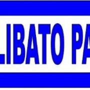 CARTELLO DIREZIONALE CELIBATO PARTY