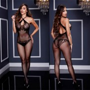 FLORAL LACE BODYSTOCKING-BACI LINGERIE